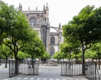 Seville cathedral and the orange tree courtyard