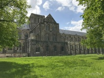 Winchester-Cathedral_001_IMG_4245