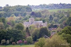 Winchester_028_IMG_7071