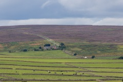 2_Yorkshire-Dales-5-of-40