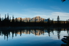 Pyramid mountain with a foreground of lodgepole pines reflected in Beauvert Lake
