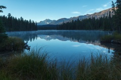Beauvert Lake just before dawn with Mount Edith Cavell in the distance