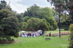 Wedding in the botanic gardens