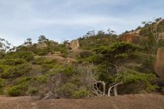 Mount-Amos-walk-11-of-33