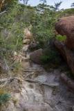 Mount-Amos-walk-15-of-33