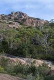 Mount-Amos-walk-6-of-33