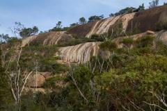 Mount-Amos-walk-8-of-33