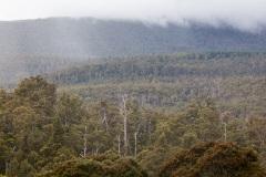 Mount-Field03_IMG_0908_5D2fi