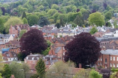 Winchester_031_IMG_7083