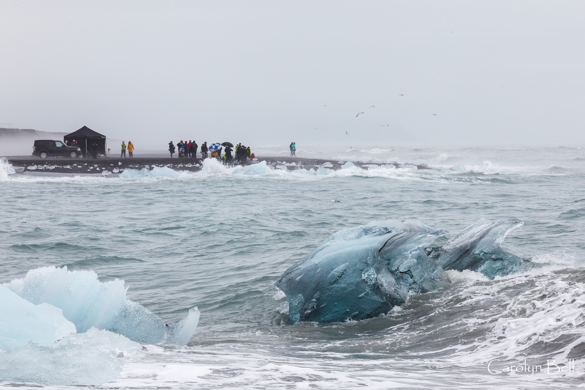 Icebergs on Breidmerkursandur beach, Iceland