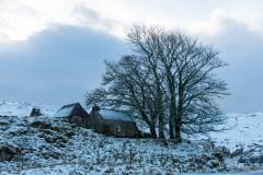 Cottage at Elphin, Scotland