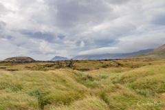 Landscape at Budir