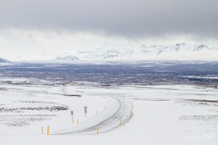 The road to Thingvellir