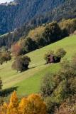 Farm buildings, Val di Luson