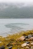 Tromso-environs-11-of-30