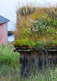Tromso-environs-18-of-30