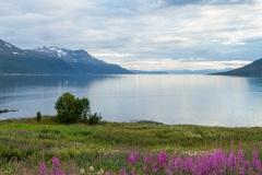 Tromso-environs-20-of-30