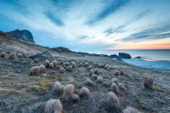 Myrland beach