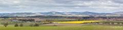 Strathmore in Spring